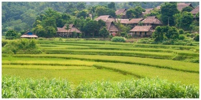 Vietnam: In contact met minderheden en dwars door groene rijstvelden