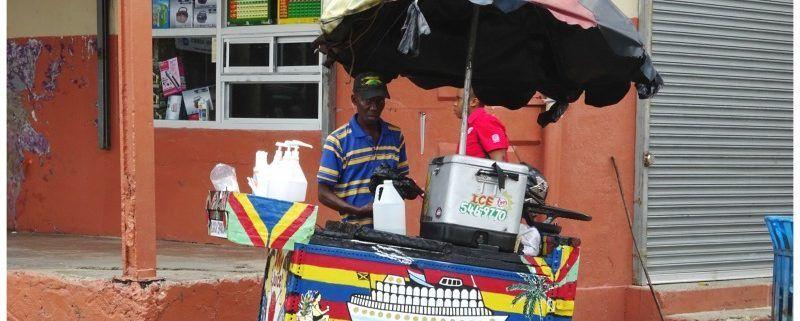 Roadtrip Jamaica | Ontdek in 1 week de parels van het eiland