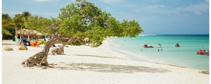 One Happy Island , 7  x must do activiteiten op Aruba