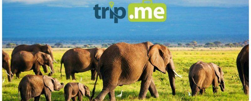 trip.me, voor authentieke reiservaringen, nu ook in het Nederlands