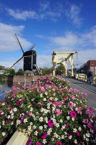 Leiden molen brug Nederland