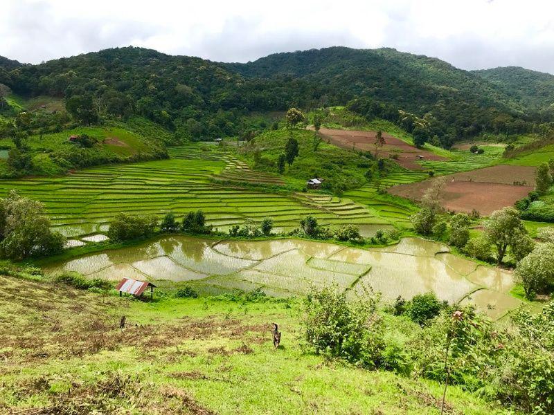 Allerleukste plekken in Thailand Eco Jungle trekking