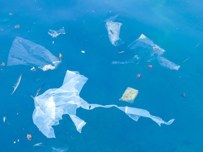 Het reisleed dat plastic heet