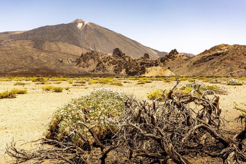 Spanje Canarische eilanden Tenerife woestijn