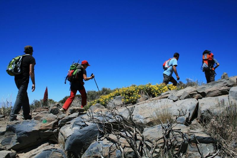Spanje Canarische eilanden Veelzijdig Tenerife wandelen Teide vulkaan