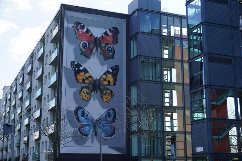 grootste insectendoos van Nederland street art Breda
