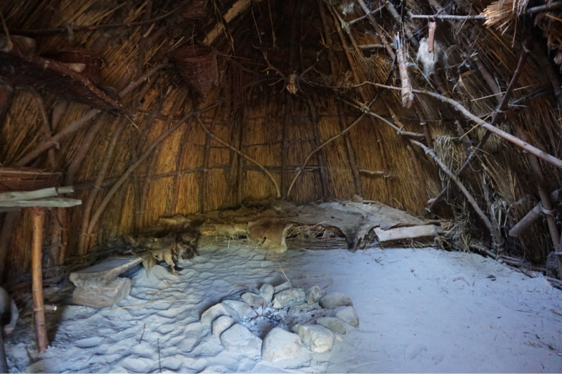 hut prehistorie Nederland