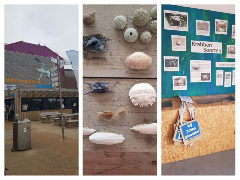Natuurcentrum Katwijk