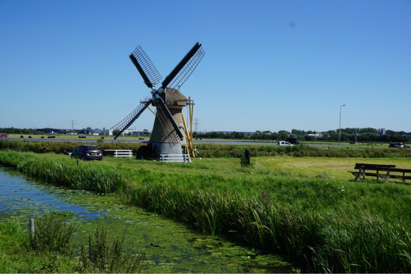 molen Rijnsburg