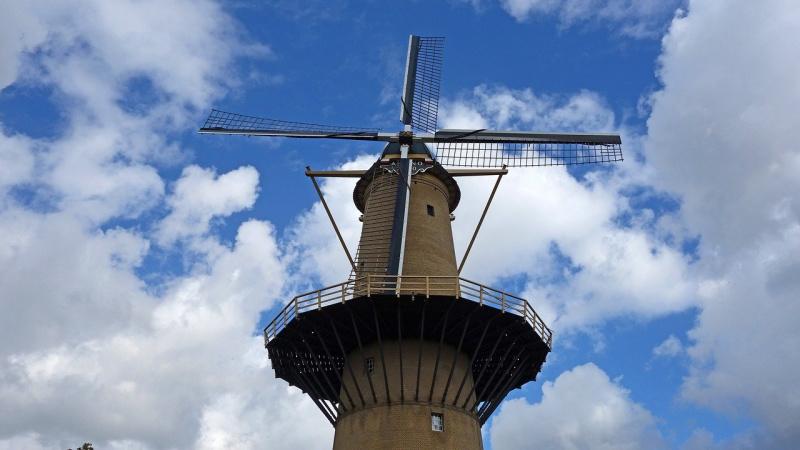 Nederland molen Schiedam