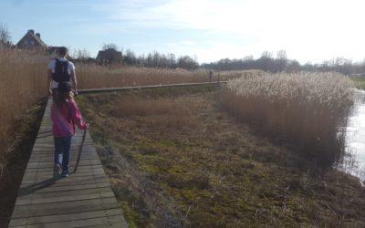 Wandelen in Breda: 5 routes onder de 10 kilometer