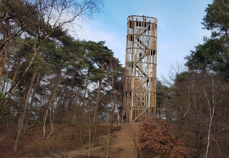Wandelen in Brabant Maashorsten
