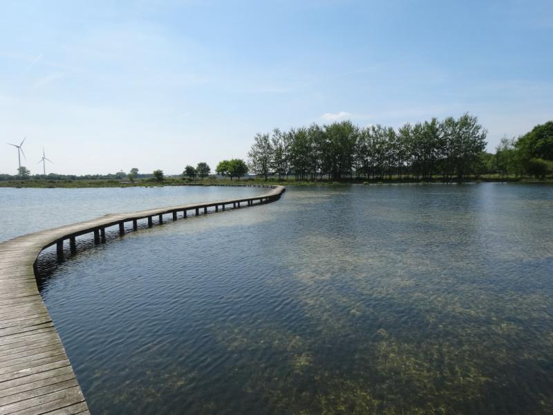 Wandelen in Brabant de Moer