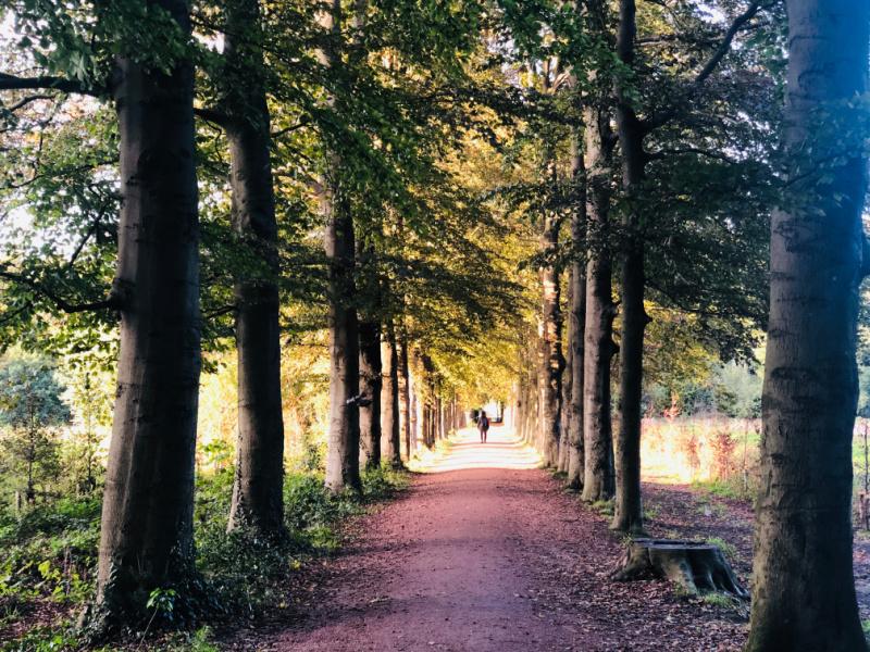 Landgoed Schothorst