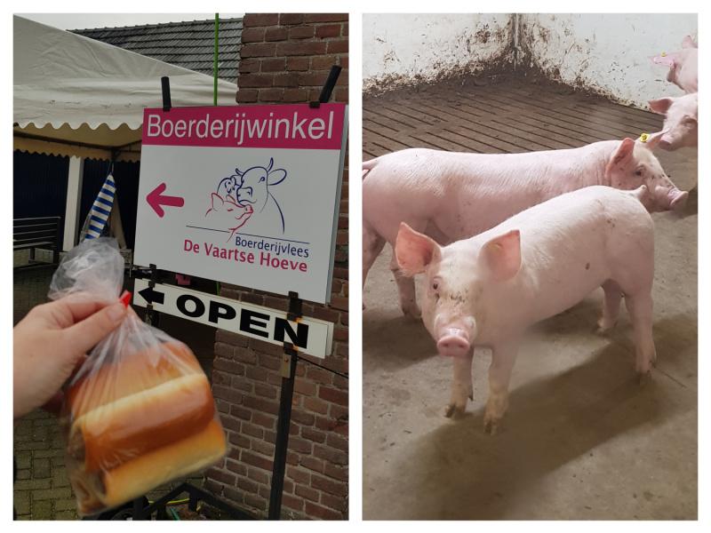 Vaarste hoeve worstenbrood varken Brabant