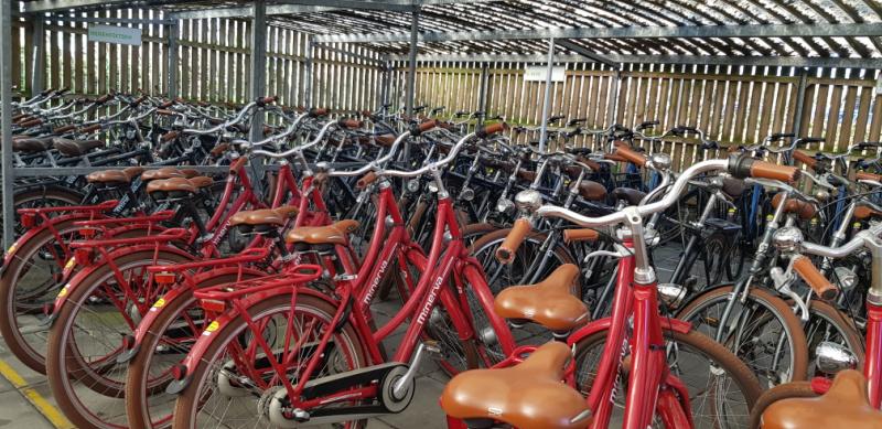 fietsverhuur Landal Villapark Livingstone Burgh-Haamstede Zeeland Nederland