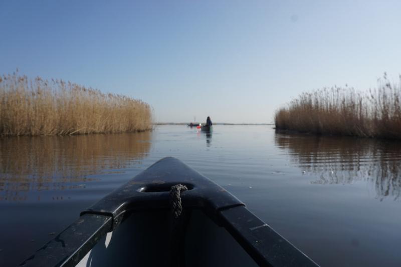 Wetlands Safari begeleide kanotochten