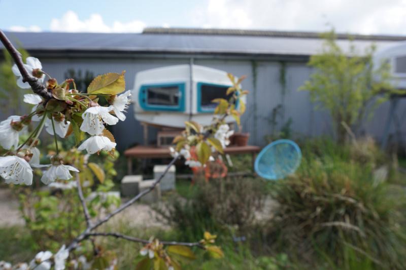Culture Campsite | Het architectonische slaapfenomeen in Rotterdam