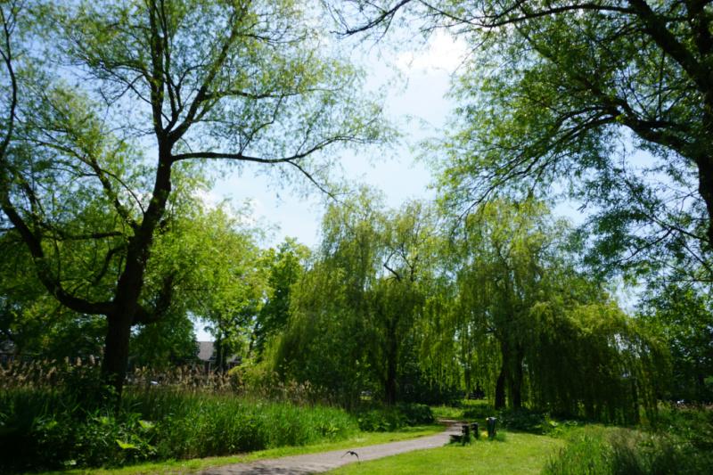 Van Sonsbeeck park