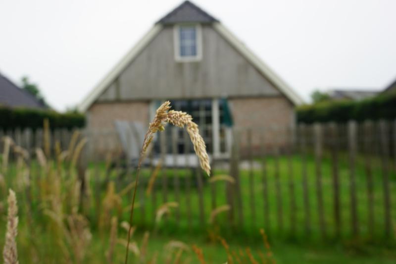 Landal Orveltermarke Drenthe Nederland