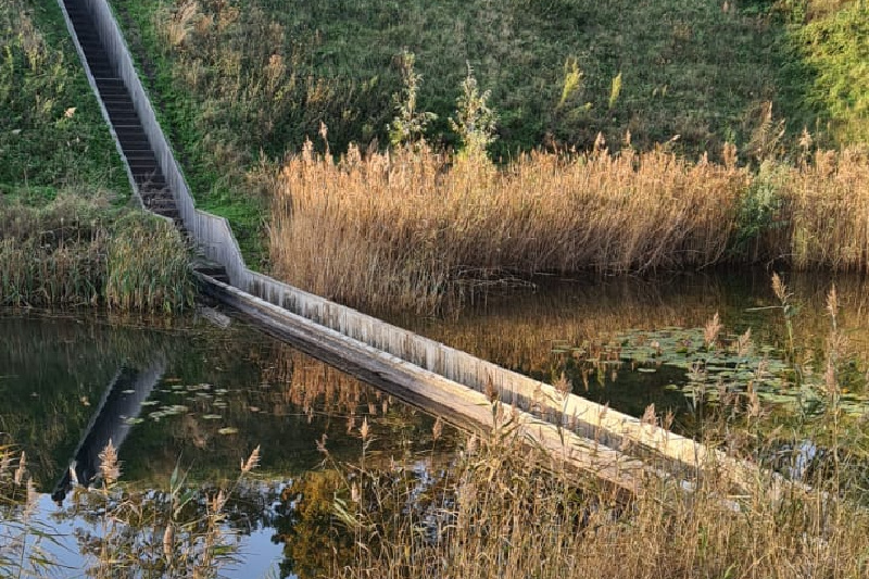 Trekpleisters Brabant Mozesbrug (Fort De Roovere)