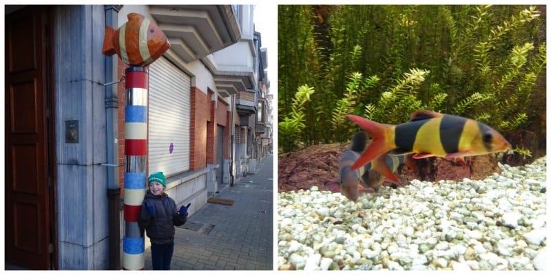 Aquarium van Brussel entree