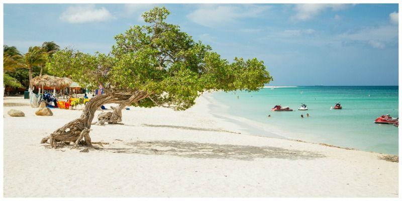Aruba One Happy Island Fofotiboom op Eagle Beach