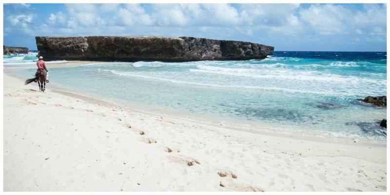 Aruba One Happy Island Paardrijden Boca Keto