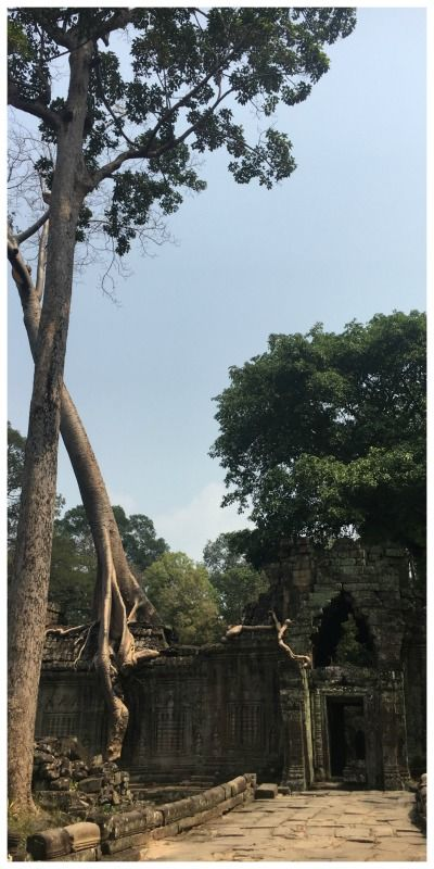Cambodja Siem Reap Local Life Marieke Preah Kahn