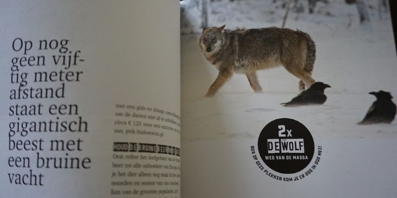 Columbus Travel Wildlife ervaringen weg van de massa wolf