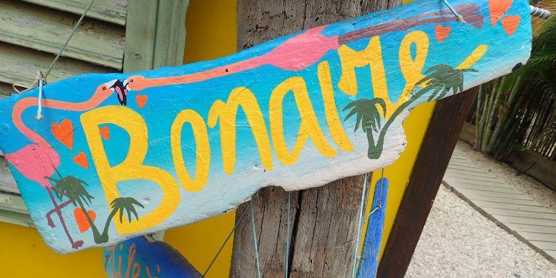 Elke en Jan zijn guesthousesitters op Bonaire Driftwood op Bonaire