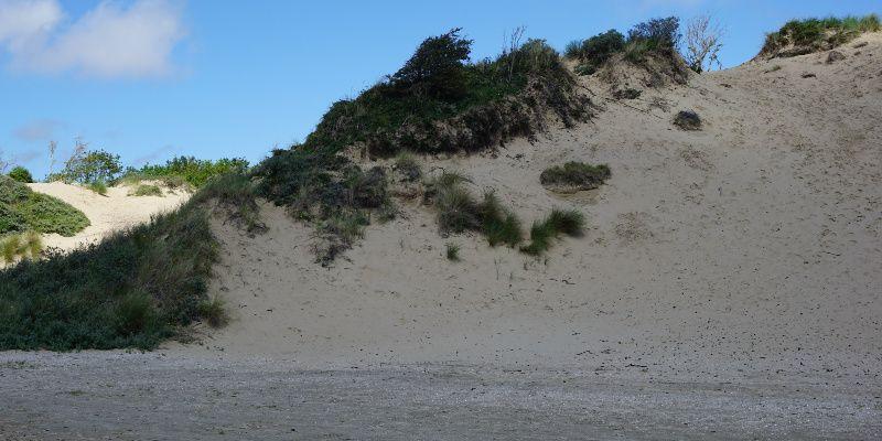Nationaal Park Zuid-Kennemerland Nederland