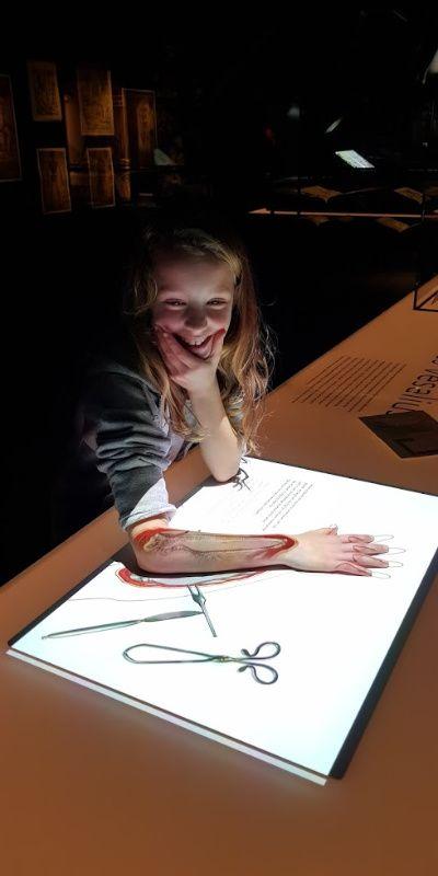 Nederland Leiden Rijksmuseum Boerhaave anatomie