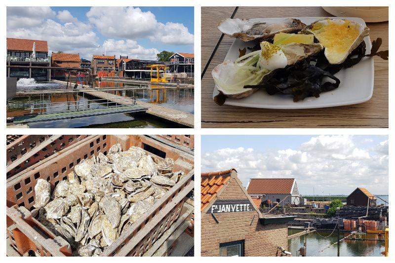 Zeeland Wemeldinge Yerseke oesterputten
