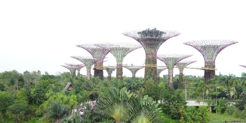 Singapore met kinderen Gardens by the bay